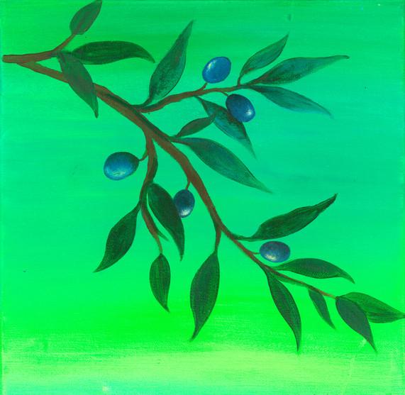 """Olive Branch"""