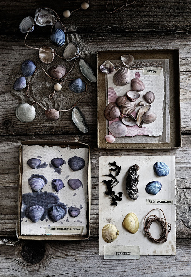 Dyeing Shells