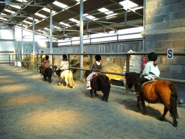 poney-club-cheval-des-hautes-terresjpg.jpg
