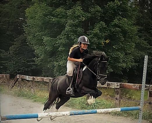 cso-poney-cheval-des-hautes-terresjpg.png