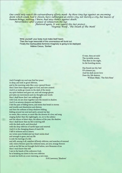 Wild vs Man poetry from exhibition catalogue