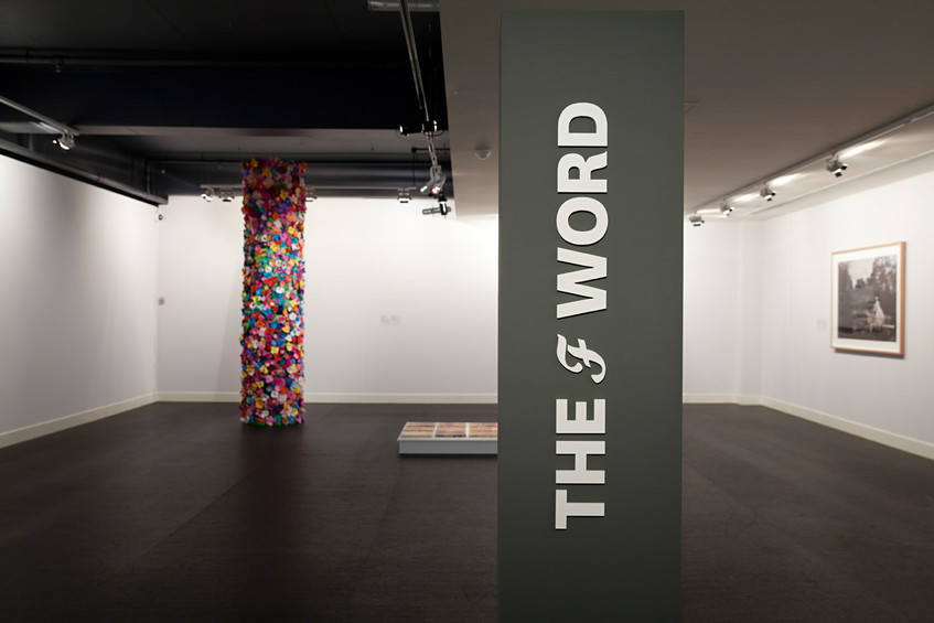 THE f WORD // installation view at Gippsland Art Gallery, Sale // Photograph by Clare Rae