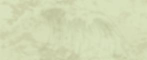 Nice Vraic Ad Background TShirt-01.png