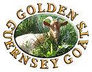Golden Guernsey.jpg