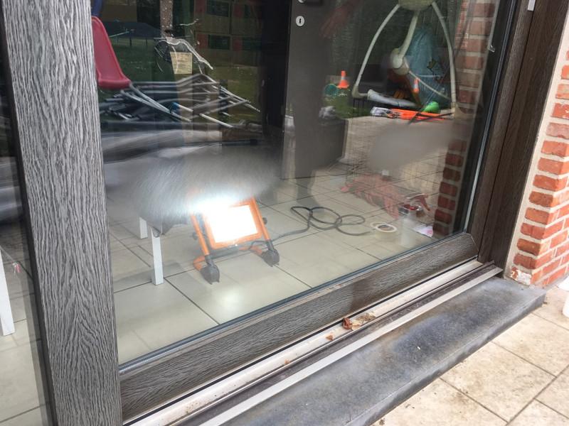 krassen hond op raam
