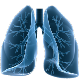 New Research into Asthma Attacks; The APEX Study