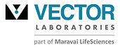 vector_laboratories_logo.jpg