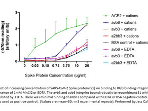 Increasing concentration of SARS-CoV-2 Spike protein (S1) on binding to RGD binding integrins