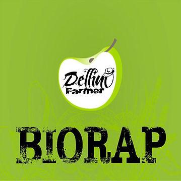 COPERTINA BIORAP HQ.jpg