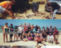 beach clean collage.jpg