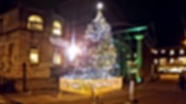 Specialist tree lighting and decoration in Harrogate, Yorkshire
