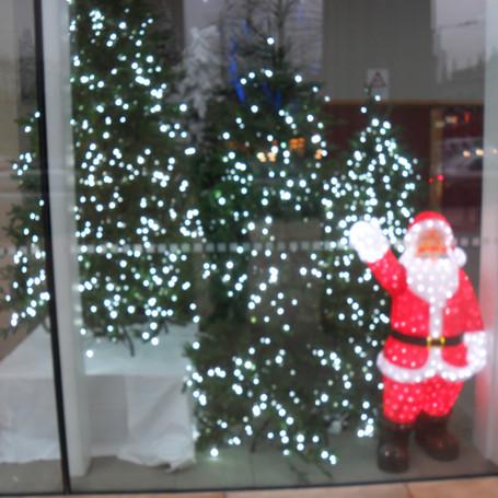 Shop Christmas Lighting Display