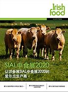 2020_China.png