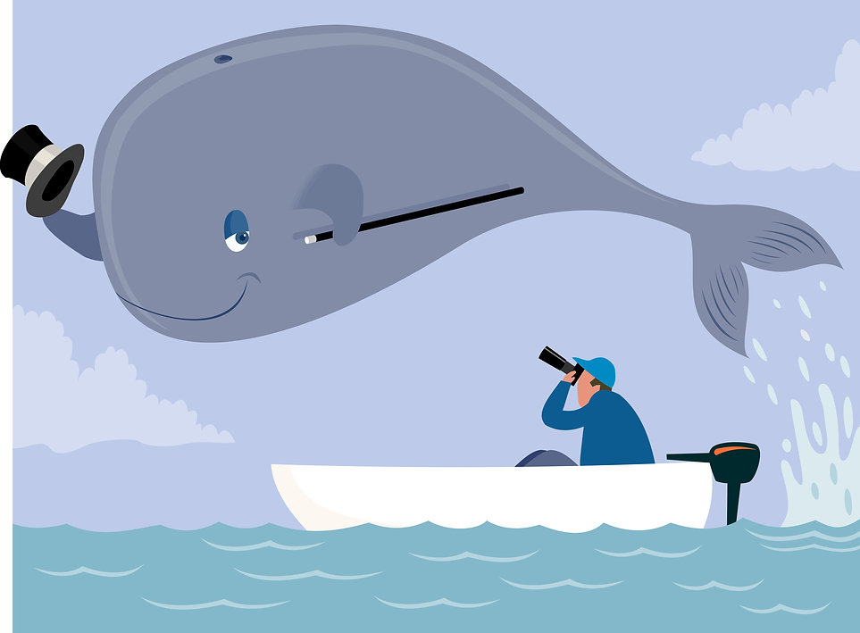 whale poser.jpg