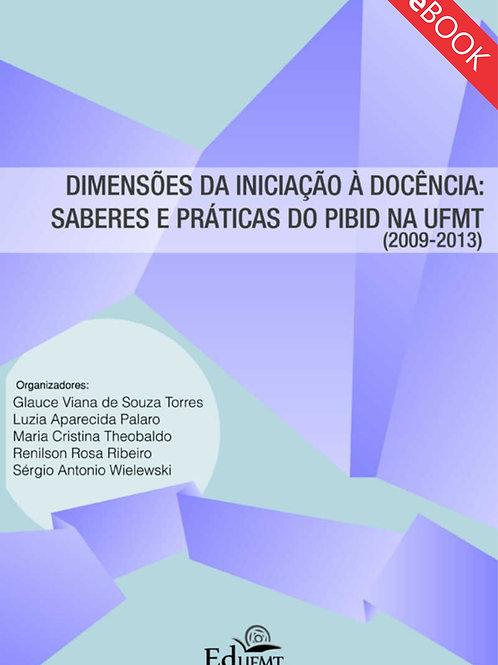 DIMENSÕES DA INICIAÇÃO À DOCÊNCIA: SABERES E PRÁTICAS DO PIBID NA UFMT 2009-2013