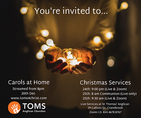 TOMS Christmas graphic.png