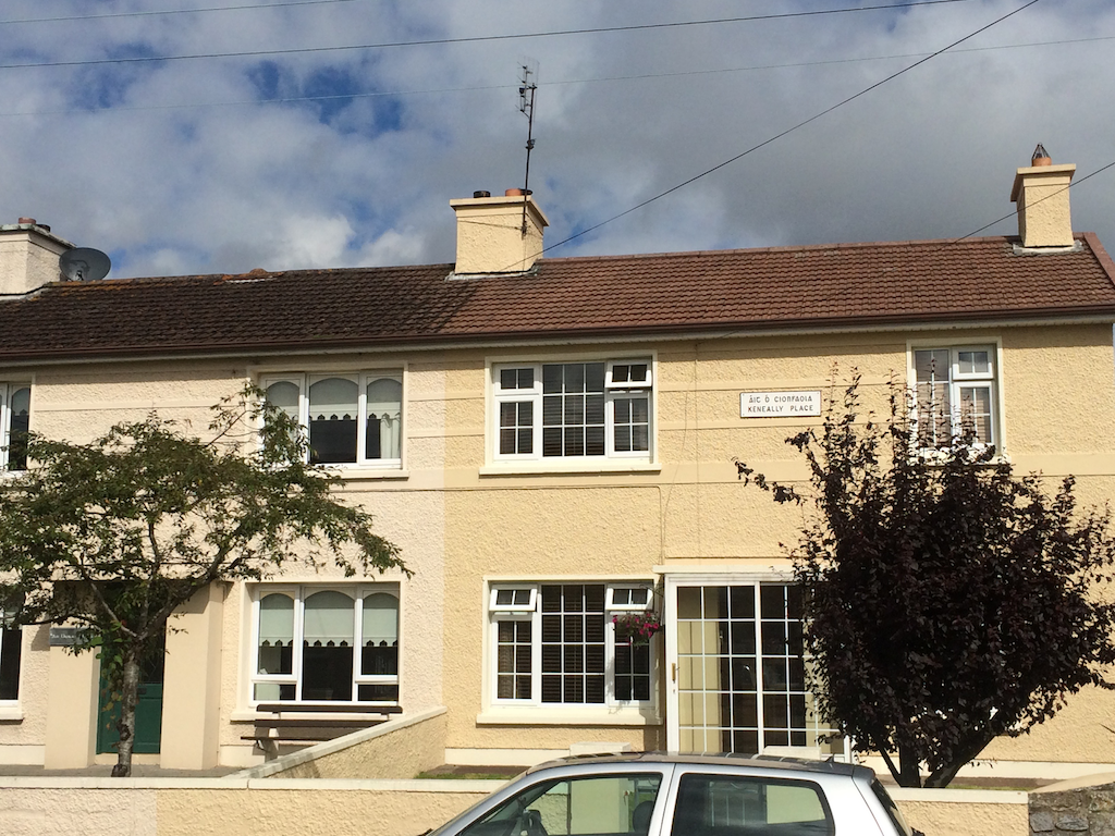 roof treated with biocide steam clean