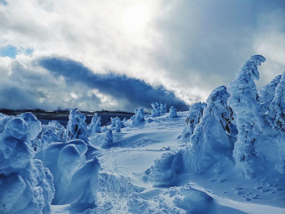 Snow Ghosts at Big White Ski Resort - Canada
