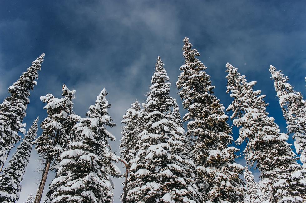 Big White Ski Resort - Canada