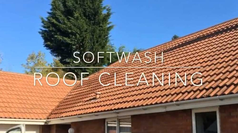 Softwash-roof.jpg