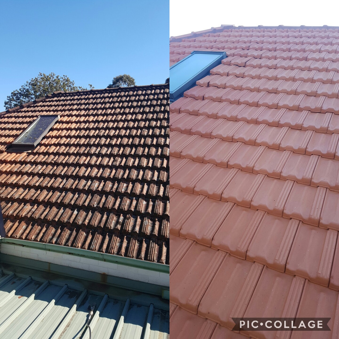 roof clean mr gutters