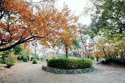 g,長住中央公園 - 008_m.jpg