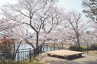 f,美和台 中央公園 ㈪ - 013.JPG