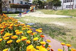 e,野多目西公園 - 003.jpg