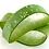 Thumbnail: Moisturizing Coconut Oil Face Lotion
