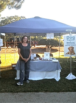 Fun day at Bark in the Park
