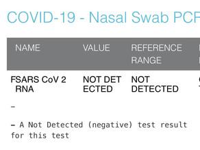 Day 9 : NYC自主隔離生活 - PCR検査の結果が出た!