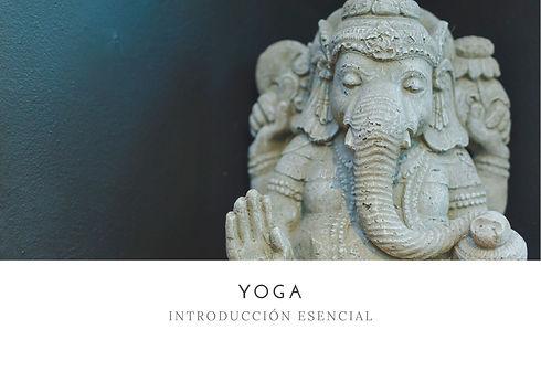 Yoga Introducción Escencial.jpg