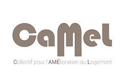 Logo CAMEL maquette nouveau logo [Récupéré]-04.jpg