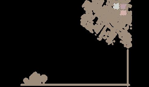 Bannière-page-accueil-site-CAMEL 2.png