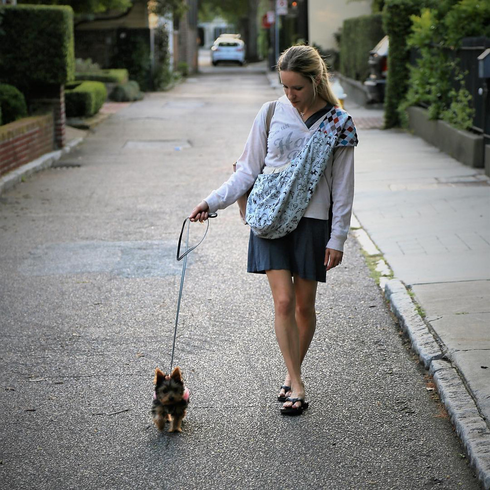 dog and mom walking down the street in Charleston, North Carolina
