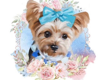 The Art of a Dog - Turning Your Pet's Photo into Art