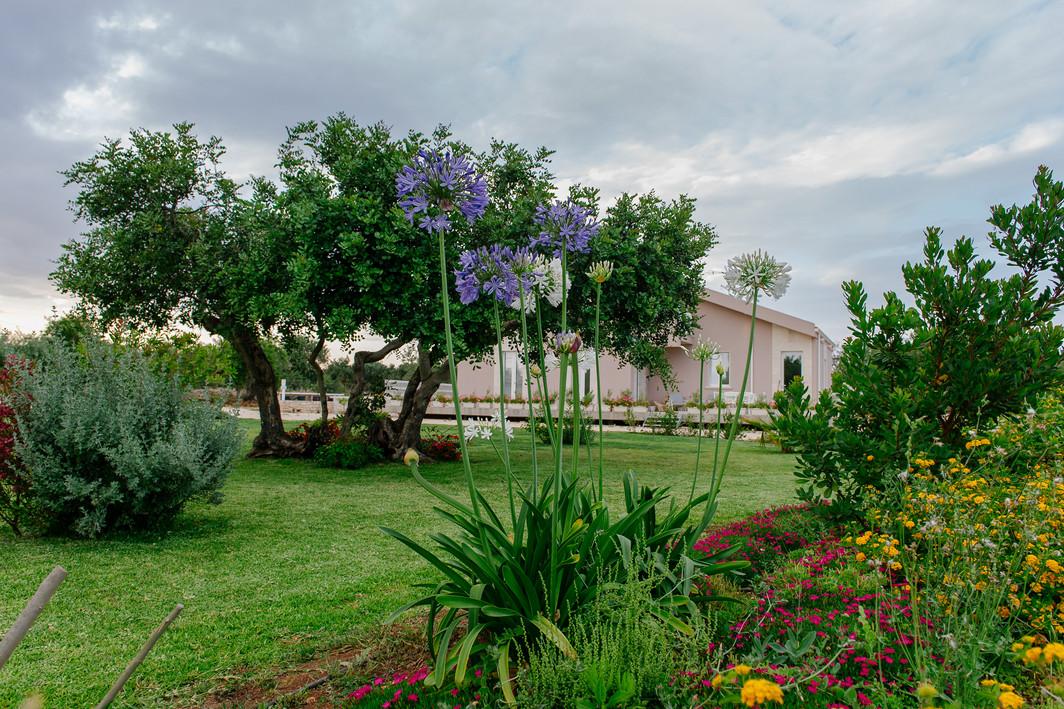 Solo Natura e Relax: Barokhouse
