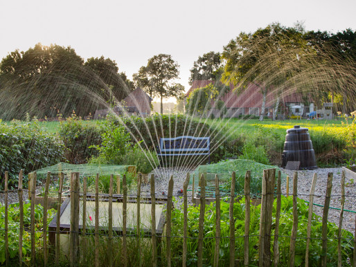 3 Water-Saving Tips For Your Irrigation System