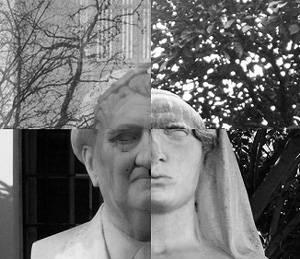 Generative Statues