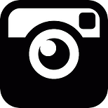 IG black and white logo.png