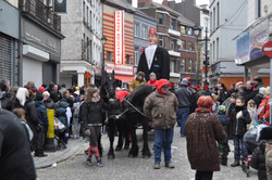 Carnaval Charleroi 2013
