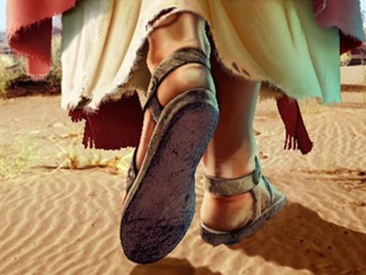 ¿Ya somos discípulos misioneros?