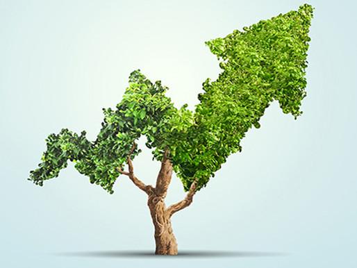 ¿Qué es la economía ambiental?