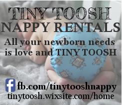 Tiny Toosh nappy rentals