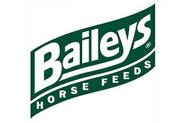 Baileys logo.jpg
