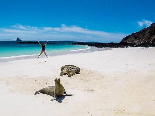 4D/3N Galápagos - Isla Santa San Cristóbal