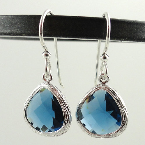 Modern Seahawk Blue Earrings
