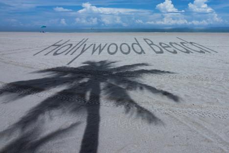 Hwd Beach palm tree shadow-1201.jpg