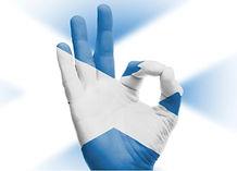 ScotlandVote.jpg
