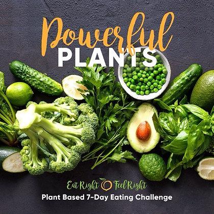 Powerful Plants Challenge